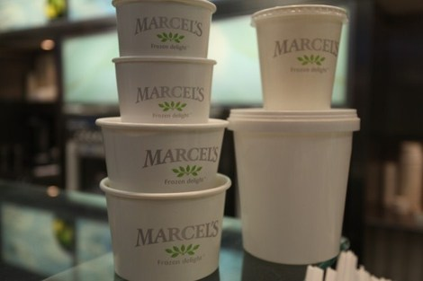 Marcel's Frozen Yogurt