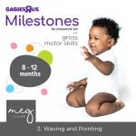 Toys R Us / Babies R Us promotion