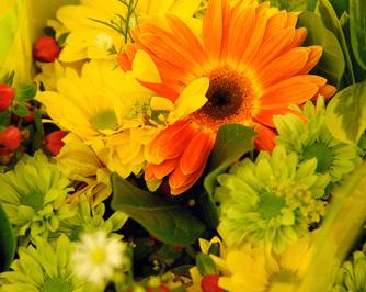 Flower Centre Florist