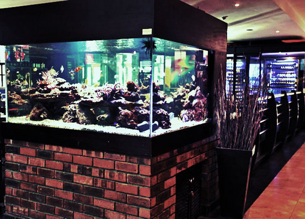 Cape Town Fish Market & Sushi Bar